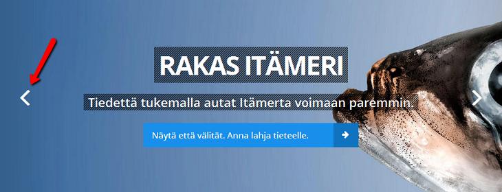 Esimerkki karusellista Helsingin yliopiston sivustolla.